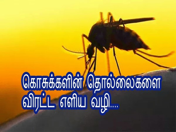 TipsforEscapefromMosquito
