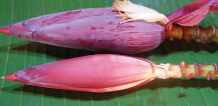 Benefits of Banana flower