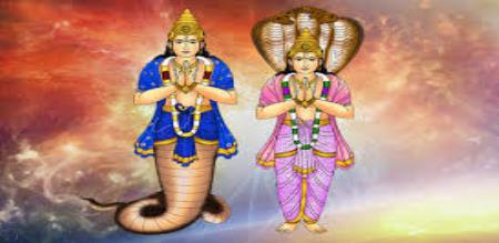 features of Rahu and Kedhu
