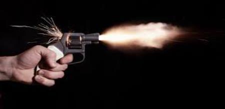 brother gun shot on his sister
