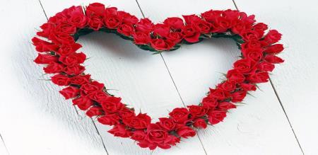 WORLD ROSE FLOWER DAY
