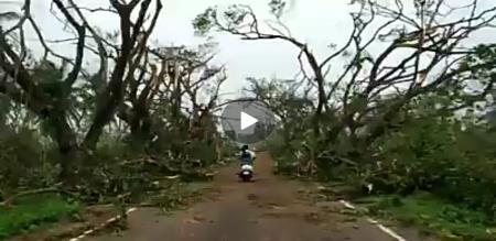 GAJA IMPACT VIRAL VIDEO