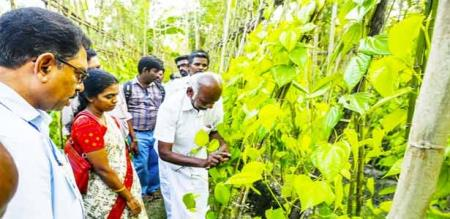 farmers affected by corporate in noyyal