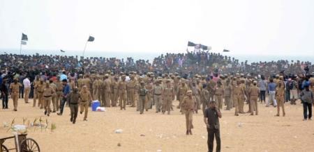 Pongal celebration in merina beach