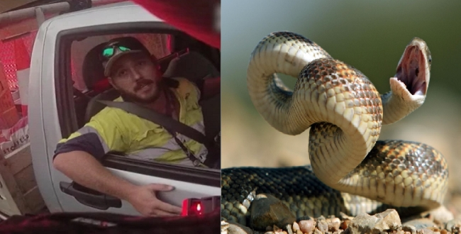 a Snake byte youngster police help his video