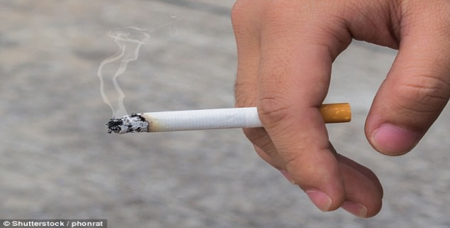 central government introduce new act smoking