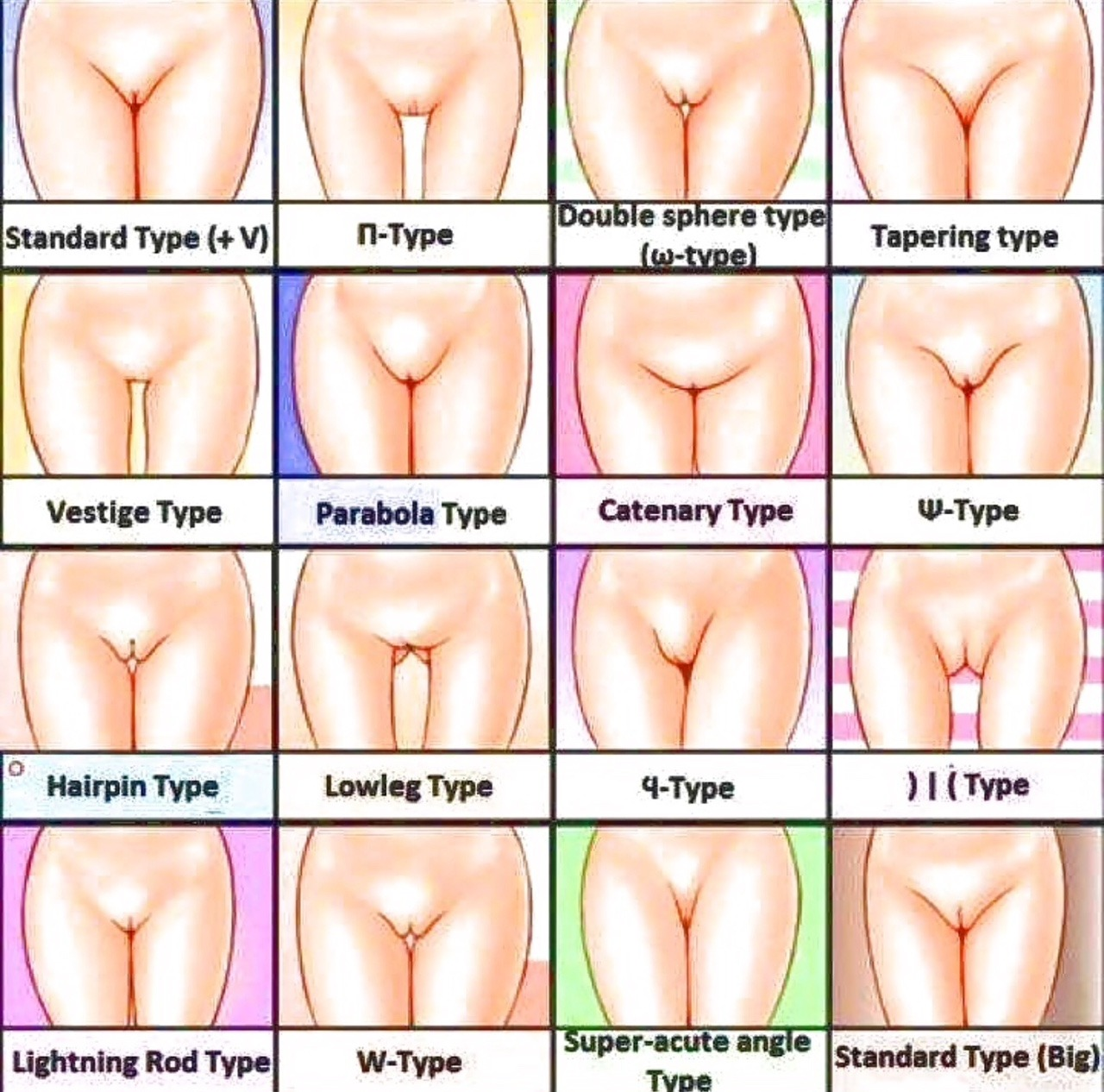 vagina, types of vagina, பிறப்புறுப்பு, பெண்களின் பிறப்புறுப்பு வகைகள்,