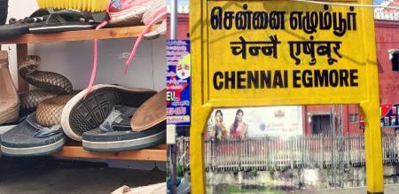 in Chennai girl injured snake byte treatment in hospital