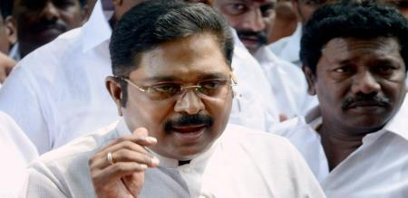 dhinakaran says about election results