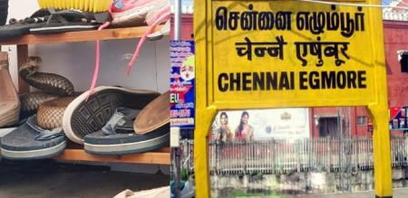 in chennai girl died byte of shoe