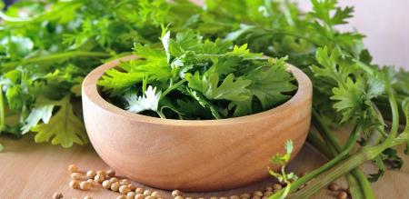 benefits of coriander leaves for face