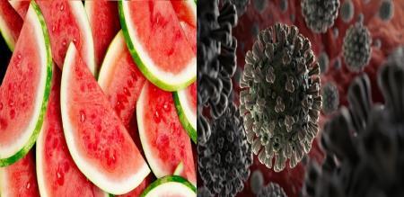 in villupuram former feel sad due to reduce water melon sales