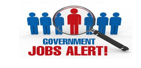 more than have central govt jobs
