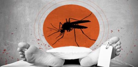girl dead for dengue fever