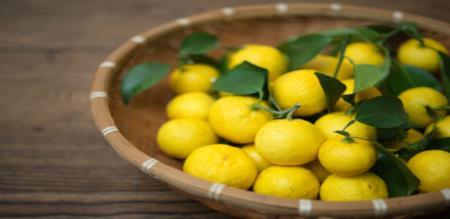 in erode a lemon price rs 3000 taken from temple