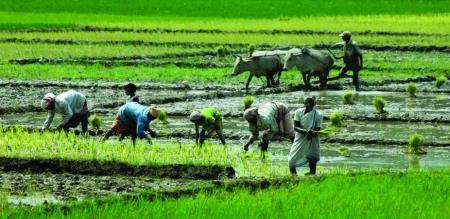 tn budget new plan for farmer