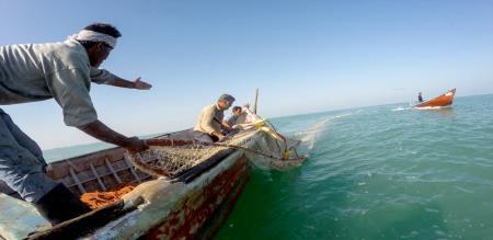 thoothukudi fisher mans starts strike