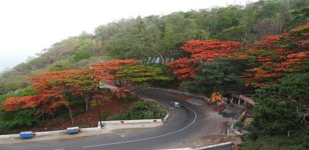 Saturday and Sunday not allowed in yercaud