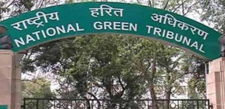 transport deportment report to ngt