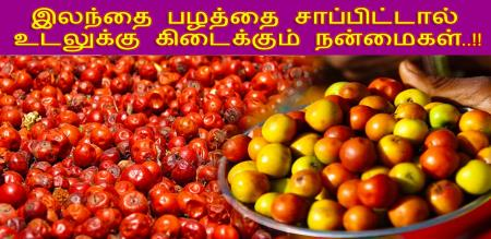 eat ilanthai fruit for health body