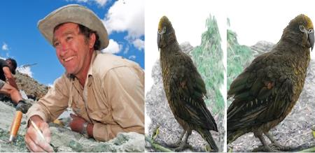 a giant parrot Squawkzilla discovers by scientist in new z eland Trevor H Worthy.