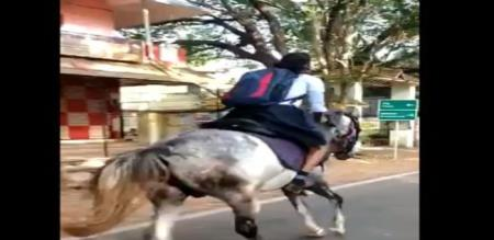 in kerala girl horse ride due to late on exam her detail about gifted horse