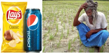 Pepsi company filed a case against to farmers for potato cultivation