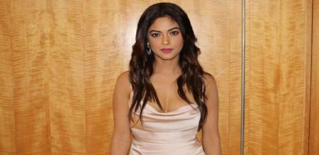Actress Meera Chopra sexual abuse tread by Junior NTR Fans