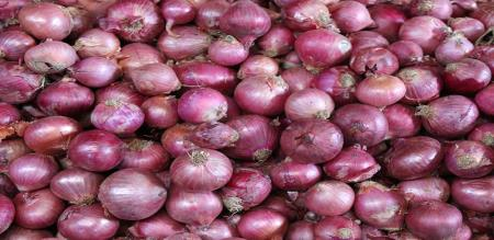 central govt announce stock limit of onion for sellers