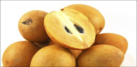 uses of sappotta fruit