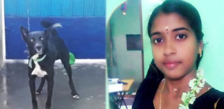 girl suicide for her pet animal