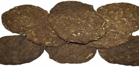 in kerala cow eat 5 savaran gold chain when eating gross