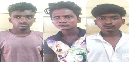 vellore sexual culprit arrest by police