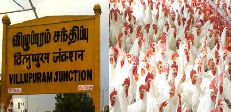Vilupuram broiler chicken owner serve free Briyani against statement about foolish corona virus